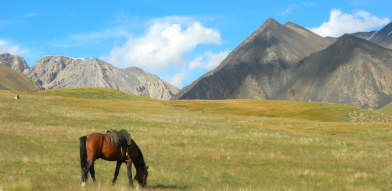 Appréciez le paysage...