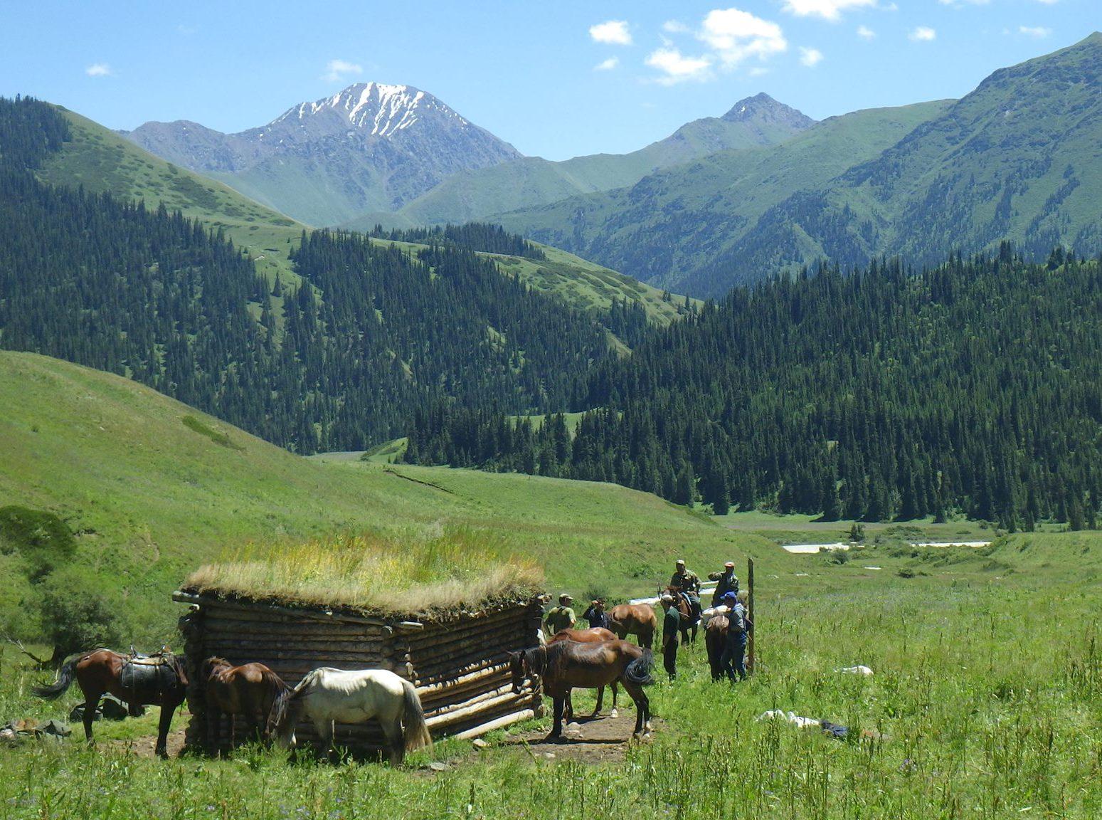 Naryn reserve