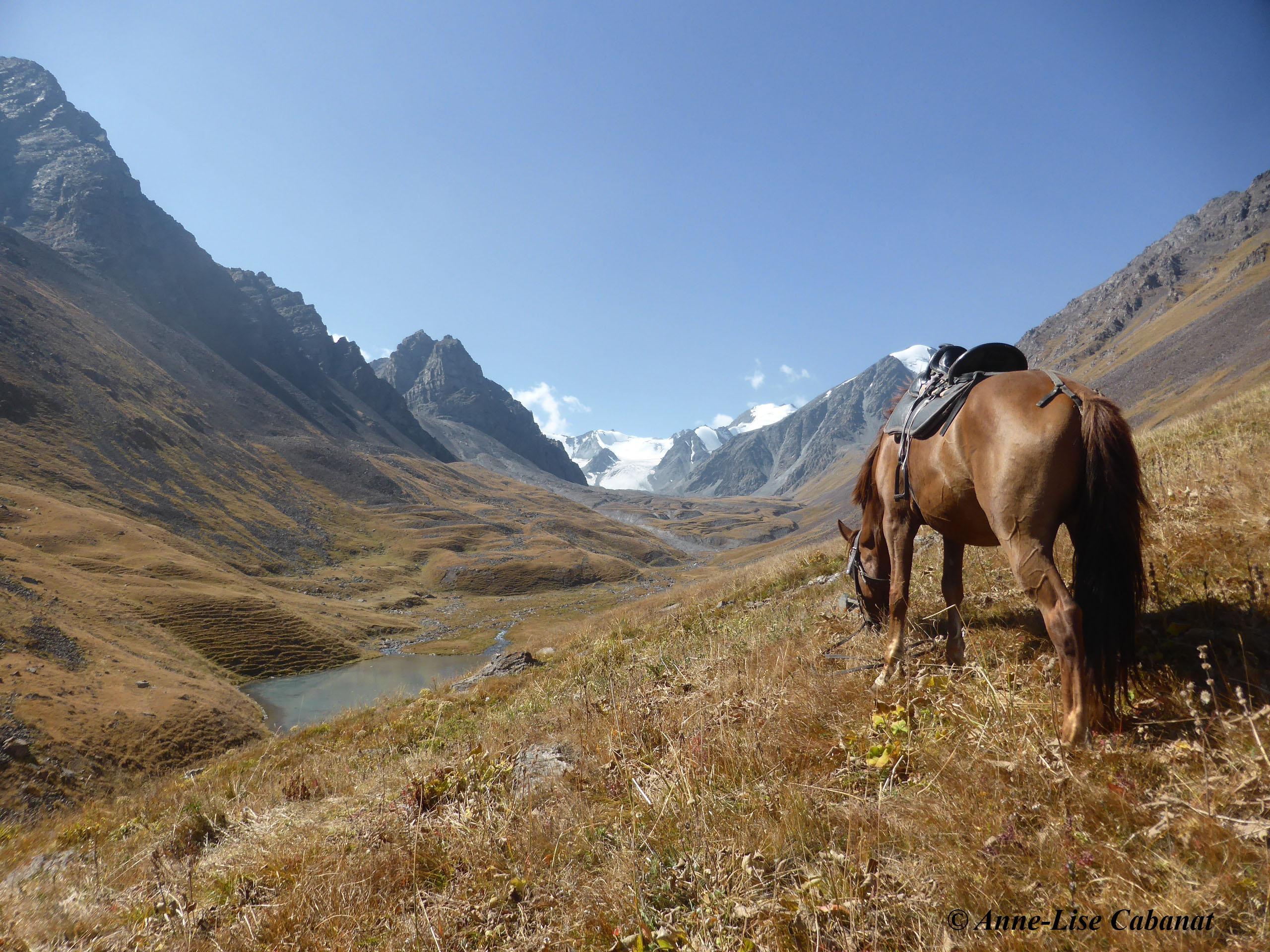 Haut de la vallée de Shamshy (par Anne-Lise Cabanat)