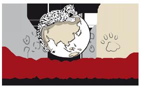 Logo OSI-PANTHERA (fond transparent)